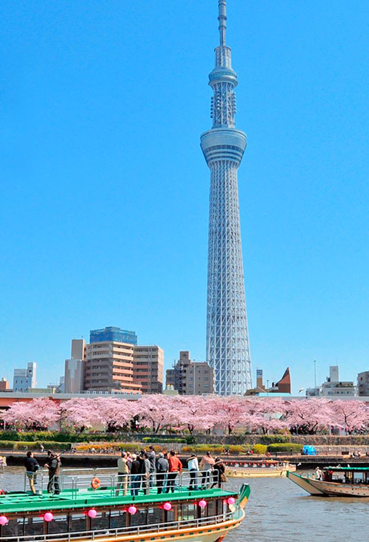 东京四季水岸风光
