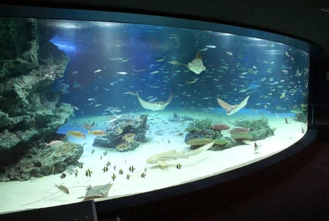 Design Aquarium Kast : Sunshine aquarium the official tokyo travel guide go tokyo