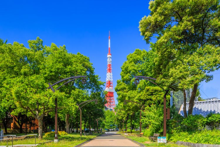 Tokyo Tower | The Official Tokyo Travel Guide, GO TOKYO