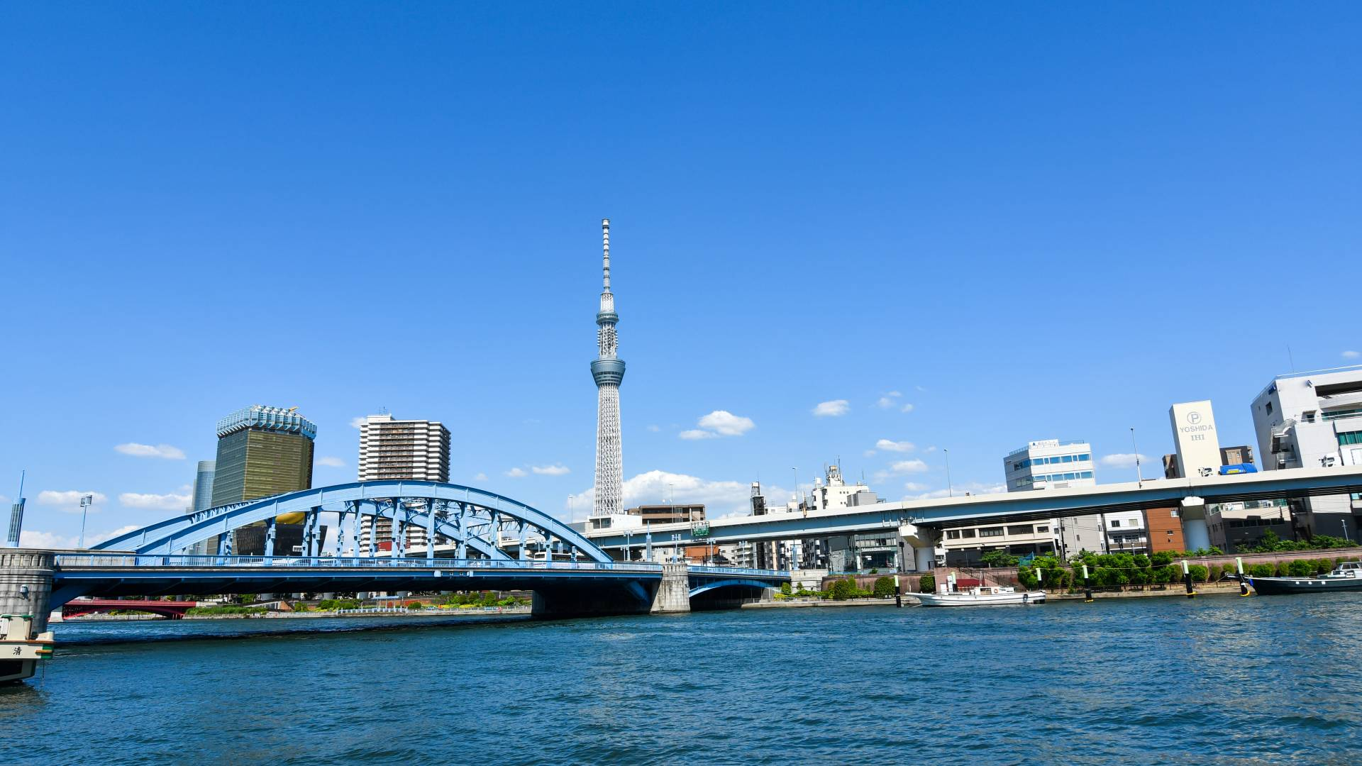 Take a walk along Sumida River