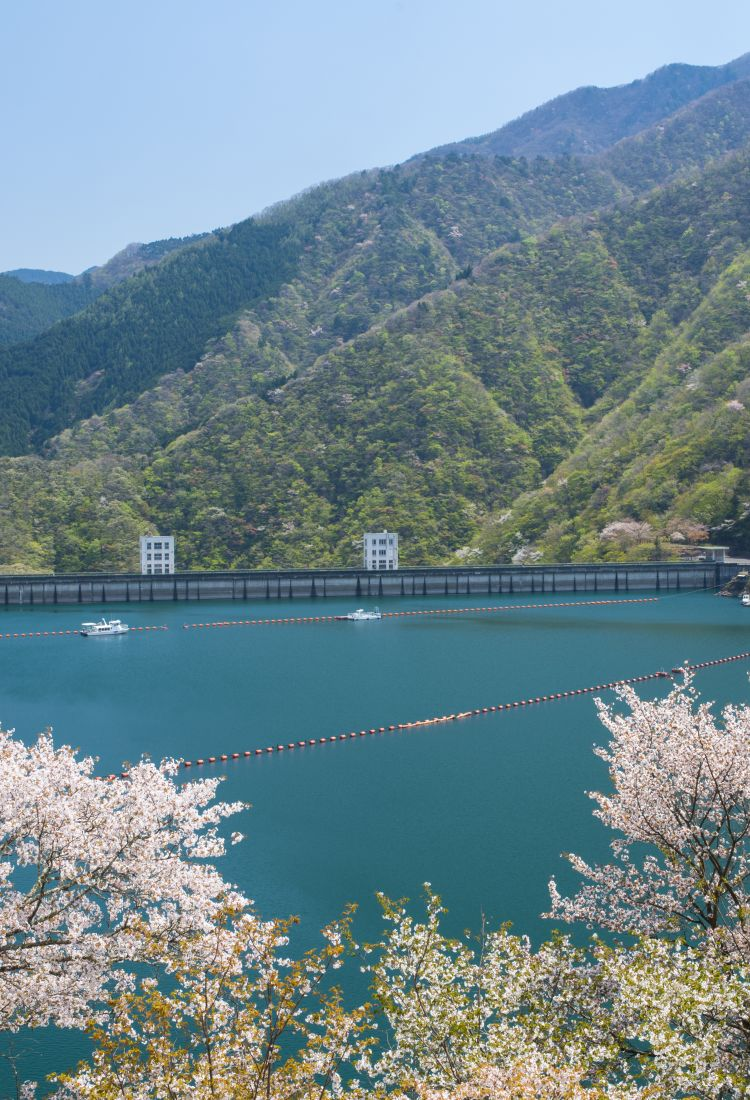 Okutama & Around_750