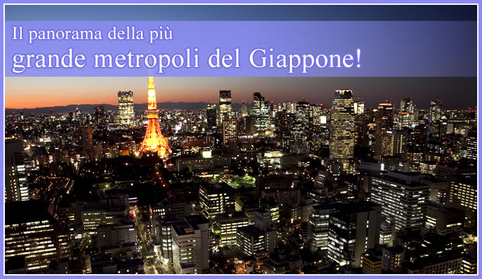 Il panorama della pi grande metropoli del giappone - Foto della bandiera del giappone ...