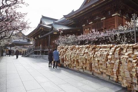 STOCK PHOTOS/Official Tokyo Travel Guide GO TOKYO