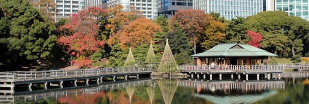 Rables Site Officiel Du Tourisme De Tokyo Go Tokyo
