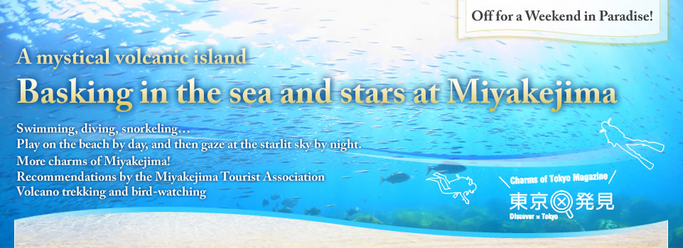 Off for a Weekend in Paradise!A mystical volcanic island Basking in the sea and stars at Miyakejima Swimming, diving, snorkeling… Play on the beach by day, and then gaze at the starlit sky by night. More charms of Miyakejima! Recommendations by the Miyakejima Tourist Association Volcano trekking and bird-watching
