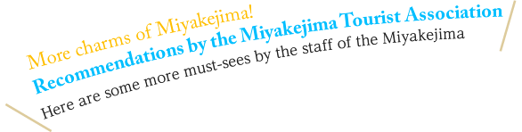 More charms of Miyakejima! Recommendations by the Miyakejima Tourist Association Here are some more must-sees by the staff of the Miyakejima Tourist Association.