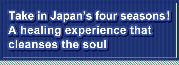 Take in Japan's four seasons! A healing experience that cleanses the soul