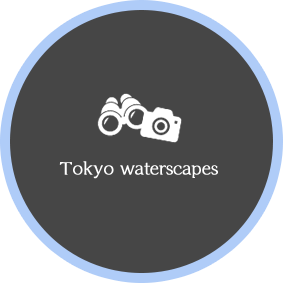 Tokyo waterscapes